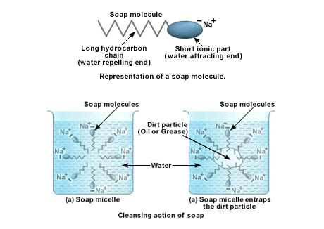 Soap-Molecule-Diagrams