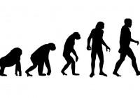 Evolúció, konzervációs biológia