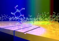 Molekuláris biológia tételek