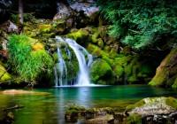 Környezet és természetvédelem szigorlathoz (DE)