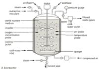 Fermentor hőmérséklet szabályozása