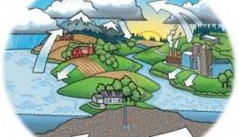 Biogeokémiai ciklusok