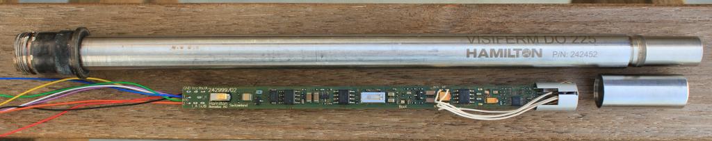 optical oxigen sensor6